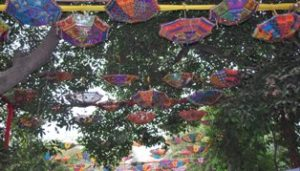 looking for birds i notice a wonderful canopy of embroidered umbrella