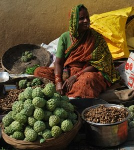 custard apples peanuts and the lady