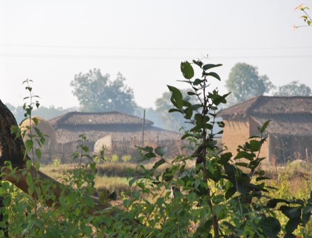 Mardari Village Bandavgarh Tiger Reserve