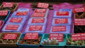 medicinal herbs at bhimashankar