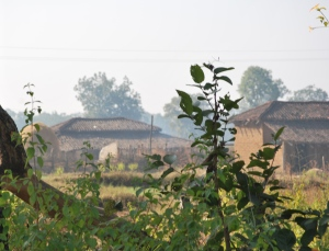 Its the village not luxurious samode safari Lodge