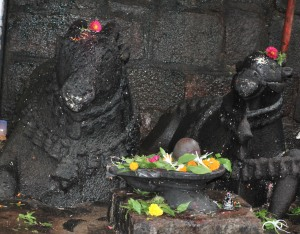 Rare: Two Nandis ( vehicle of Lord Shiva) : whats the reason?
