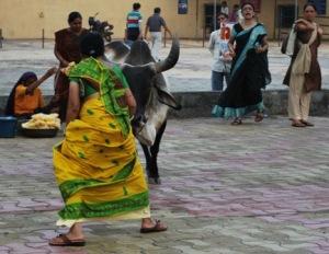 woman matador