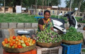 these vegetables are then sold by these pretty vegetable vendors