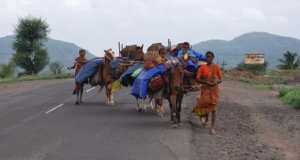 nomadic tribe in transit with the western ghats as backdrop